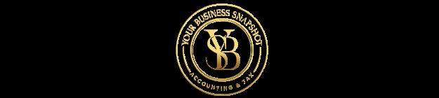 Your Business Snapshot logo