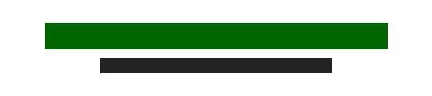 Stephen F McFadden CPA logo